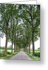 Brabant Road Greeting Card