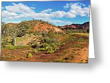 Bracchina Gorge Flinders Ranges South Australia Greeting Card