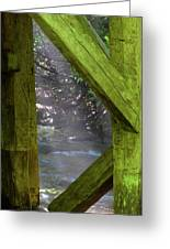 Braced With Moss Greeting Card