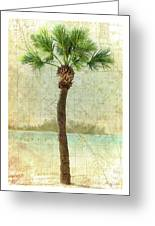 Bradenton Palm Greeting Card