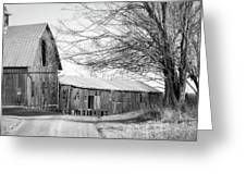 Bradford County Road Greeting Card