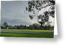 Bradman Oval Bowral Greeting Card