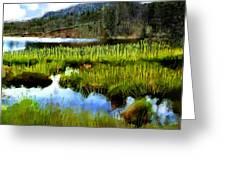 Brainard Lake Rocky Mountain National Park Greeting Card