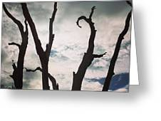 Branch Silouettes On Skeleton Beach Greeting Card