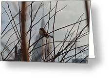 Branch With A View Greeting Card