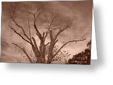 Branches Against Sepia Sky H   Greeting Card