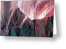 Branches In The Canyon Greeting Card