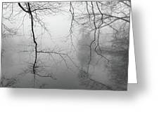Branches In The Morning Mist Greeting Card