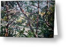 Branches Of Light Greeting Card