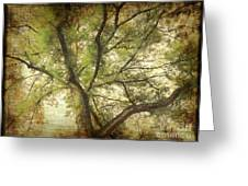 Branching Upward Greeting Card