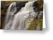 Brandywine Falls IIi Greeting Card