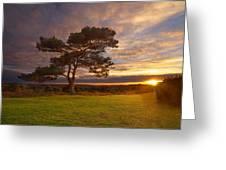 Bratley View Tree Greeting Card