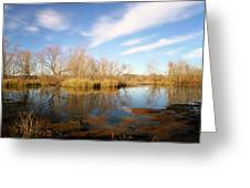 Brazos Bend Winter Bliss Greeting Card