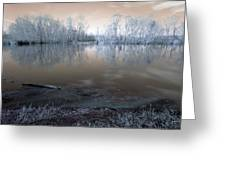 Brazos Bend Winter Fantasy Greeting Card