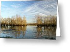 Brazos Bend Winter Reflections Greeting Card