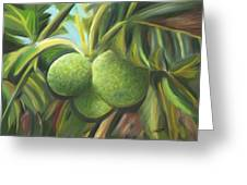 Breadfruits St Kitts Greeting Card