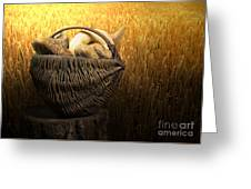 Breads And Wheat Cereal Crops Greeting Card