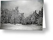 Break In The Storm Greeting Card
