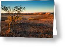 Breakaway Dawn Greeting Card