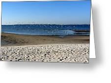 Breakfast At The Beach Greeting Card