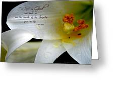 Breath Of Life Greeting Card by Debra Straub
