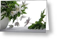 Breath Of Spring Greeting Card