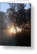 Breath Of Sunshine Greeting Card