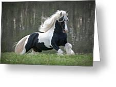 Breathtaking Stallion Greeting Card