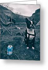 Brewdog Bull Greeting Card