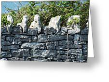Briars And Stones New Quay Ireland County Clare Greeting Card