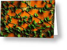 Brick And Leafs Greeting Card