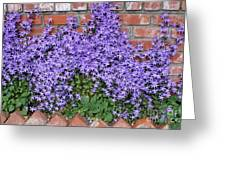Brick Wall With Blue Flowers Greeting Card