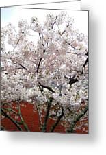 Bricks And Blossoms Greeting Card