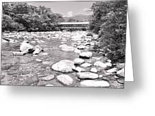 Bridge And Mountain Stream In Black And White Greeting Card