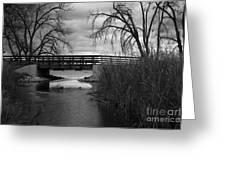 Bridge In Black And White Greeting Card