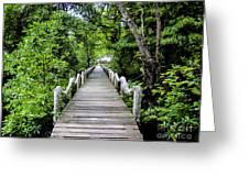 Bridge In Kosrae Greeting Card
