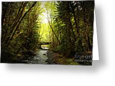 Bridge In The Rainforest Greeting Card