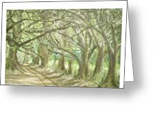 Bridge Of Oaks Greeting Card