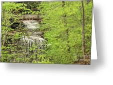 Bridge Over Little Clifty Falls Greeting Card