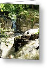 Bridge Over The River Braan, And The Black Falls In The Hermitage, At Dunkeld Greeting Card