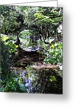 Bridge Reflection At Blarney Caste Ireland Greeting Card