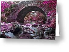 Bridge River Greeting Card