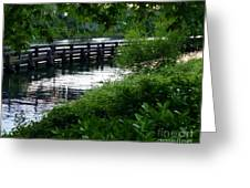 Bridge Through The Trees Greeting Card