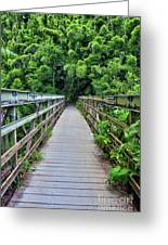 Bridge To Bamboo Forest Greeting Card