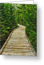 Bridge To Chimney Pond Greeting Card