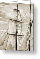 Brigantine Tallship Fritha Sails And Rigging Greeting Card