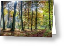 Bright Autumn Morning Greeting Card