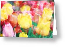 Bright Dreams In The Tulips Greeting Card