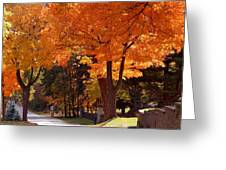 Bright Maple Morning Greeting Card