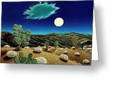 Bright Night Greeting Card